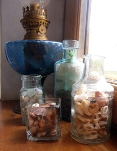 Seashells colour coded in antique bottles